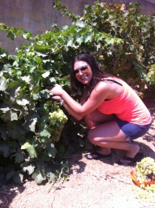 About to eat grapes off the vine.